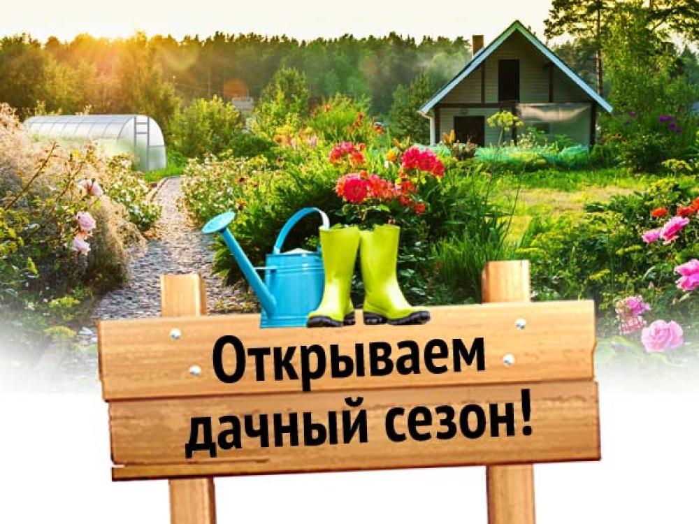 http://www.lotusite.ru/images/news/260-665e3c8e9f02e3ab93f67312abada115.jpg